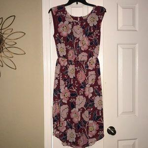 NWT Loft Dress, size medium 🌸